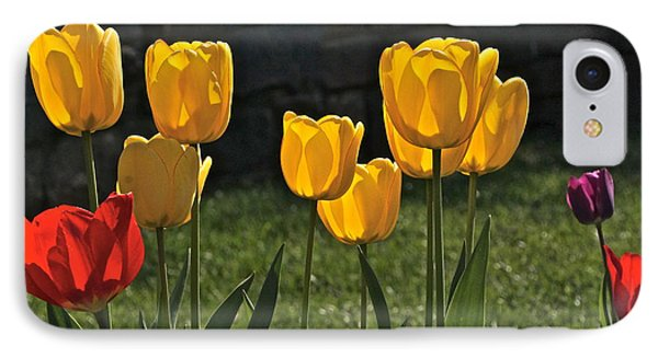 Lollipop Tulips And Grass And Stone Wall Phone Case by Byron Varvarigos