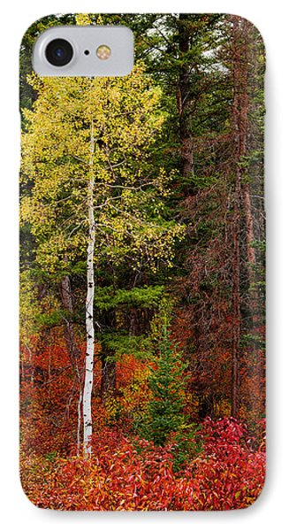 Lone Aspen In Fall Phone Case by Chad Dutson