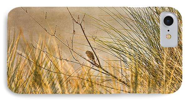 IPhone Case featuring the photograph Lone Bird by Anne Rodkin