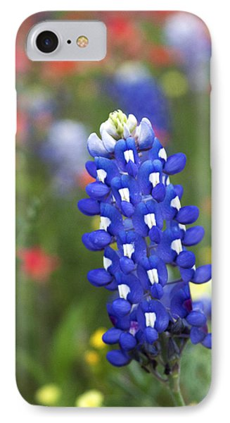 Lone Bluebonnet IPhone Case
