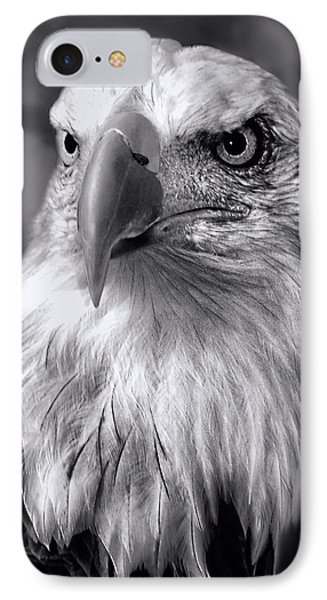 Lone Eagle IPhone Case by Adam Olsen
