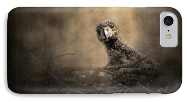 Lone Eaglet In The Nest IPhone Case by Jai Johnson
