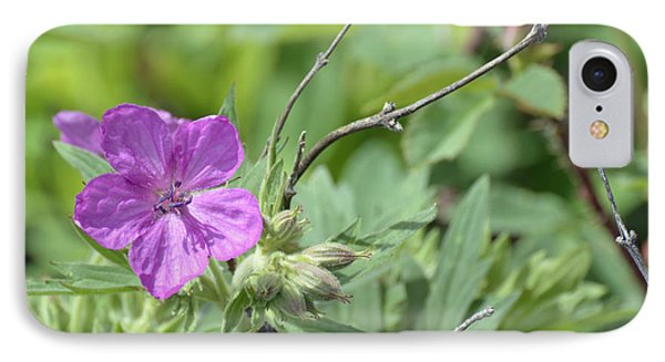 Lone Geranium In Yellowstone Phone Case by Bruce Gourley