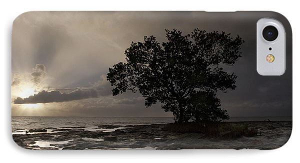Lone Mangrove IPhone Case by Keith Kapple