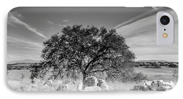 Lone Oak IPhone Case by Robert  Aycock