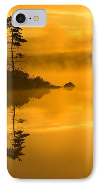 Lone Pine And Misty Lake At Dawn Phone Case by Irwin Barrett