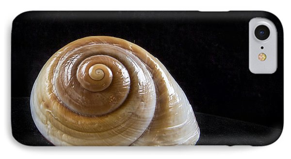 Lone Shell Phone Case by Jean Noren