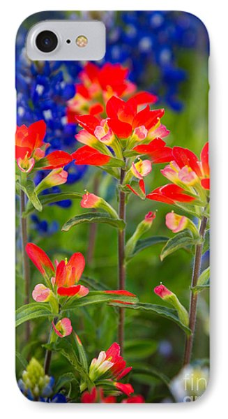 Lone Star Blooms IPhone Case by Inge Johnsson