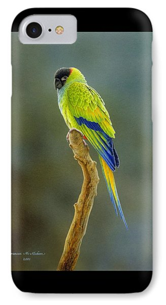 Lone Star - Nanday Conure IPhone Case by Frances McMahon