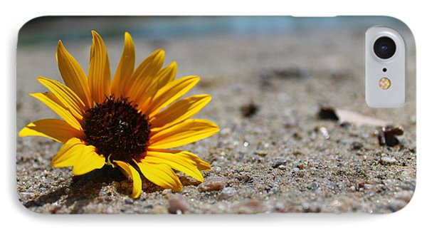 Lone Sunflower IPhone Case by Alicia Knust