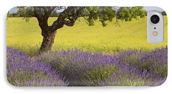 Lone Tree In Provence Phone Case by Brian Jannsen