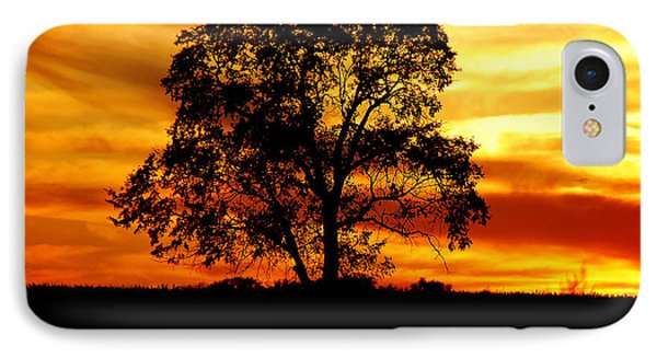 Lone Tree IPhone Case by Mary Carol Story