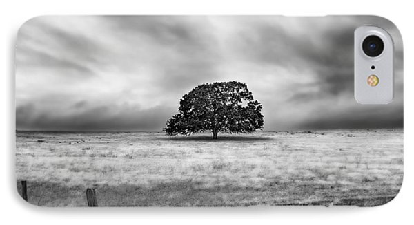 Lone Valley Oak Horizontal IPhone Case
