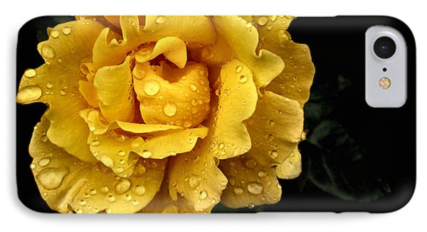 Lone Yellow Rose IPhone Case