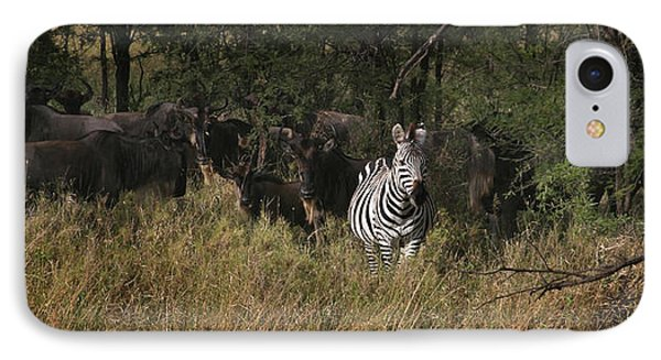IPhone Case featuring the photograph Lone Zebra by Joseph G Holland