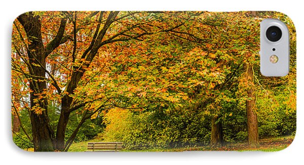 Lonely Autumn Bench IPhone Case by Chris McKenna