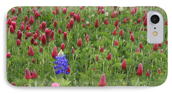 Lonely Bluebonnet IPhone Case by Jerry Bunger