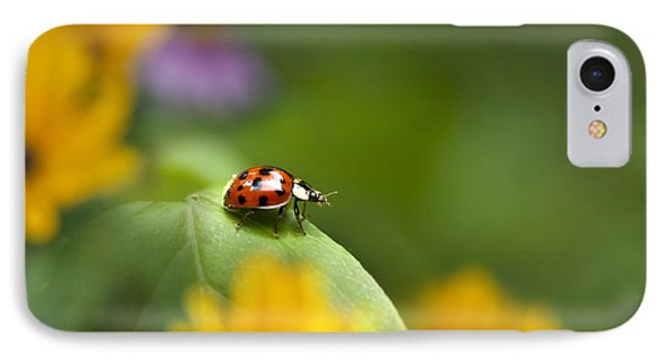 IPhone Case featuring the photograph Lonely Ladybug by Christina Rollo