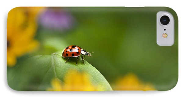 Lonely Ladybug IPhone Case by Christina Rollo