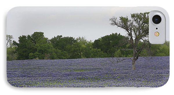 Lonely Tree In Bluebonnets IPhone Case by Jerry Bunger