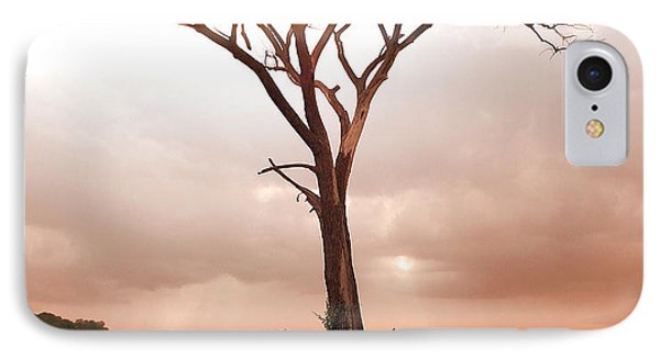 IPhone 7 Case featuring the photograph Lonely Tree by Ricky L Jones