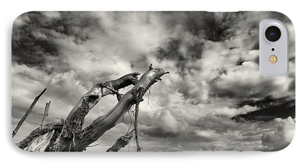 Lonely Tree Roots Reaching For The Sky IPhone Case