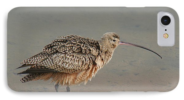 IPhone Case featuring the photograph Long-billed Curlew by Bob and Jan Shriner