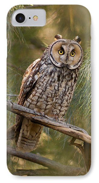 Long-eared Owl IPhone Case