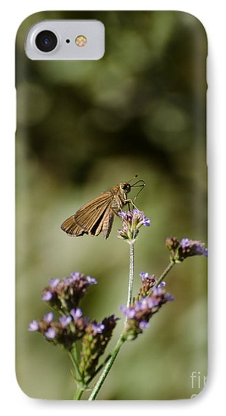 Long-winged Skipper Butterfly IPhone Case