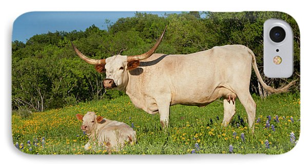 Longhorn Cattle On Central Texas Ranch IPhone Case by Larry Ditto
