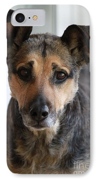 Look In To Her Big Brown Eyes IPhone Case