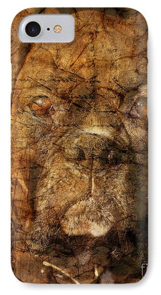 Look Into My Eyes Phone Case by Judy Wood
