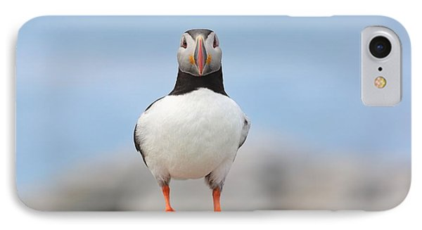 Looking At You IPhone Case by Daniel Behm