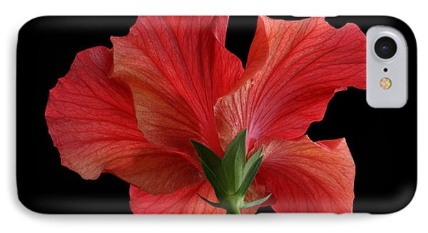 IPhone Case featuring the photograph Looking Back by Judy Whitton