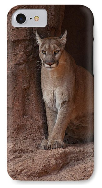 IPhone Case featuring the photograph Looking For A Meal by Daniel Hebard