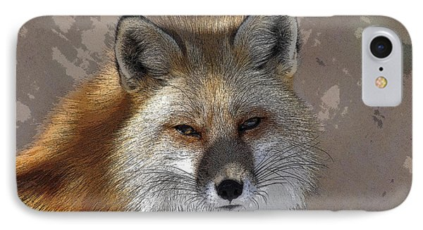 Looking Foxy IPhone Case by Barbara R MacPhail