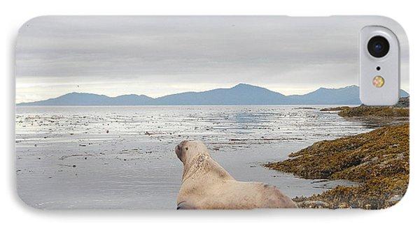 Looking Seaward IPhone Case