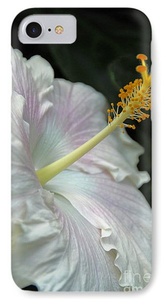 Looking Up IPhone Case by Cindy Manero