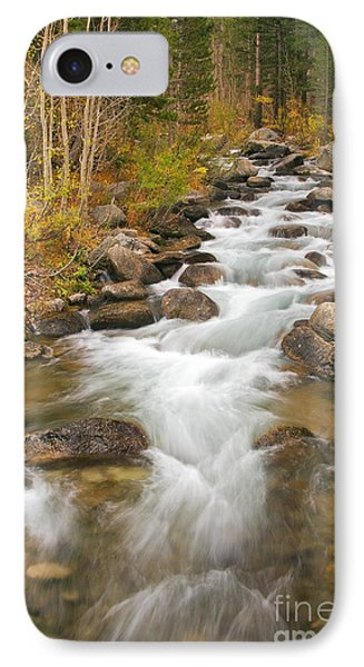 Looking Upstream IPhone Case by Alice Cahill