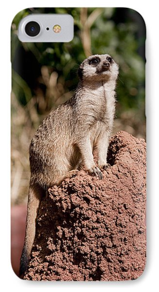Lookout Post IPhone Case by Michelle Wrighton