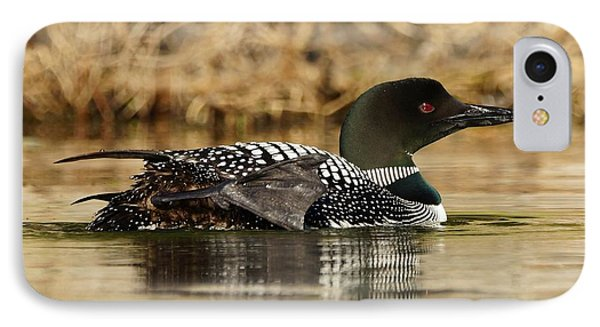 Loon 10 IPhone Case