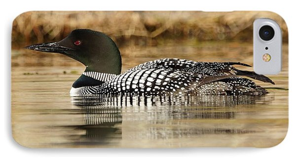 IPhone Case featuring the photograph Loon 11 by Steven Clipperton