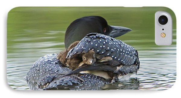 Loon Chick - Peek A Boo IPhone Case