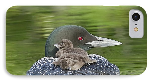 Loon Chicks -  Nap Time IPhone 7 Case