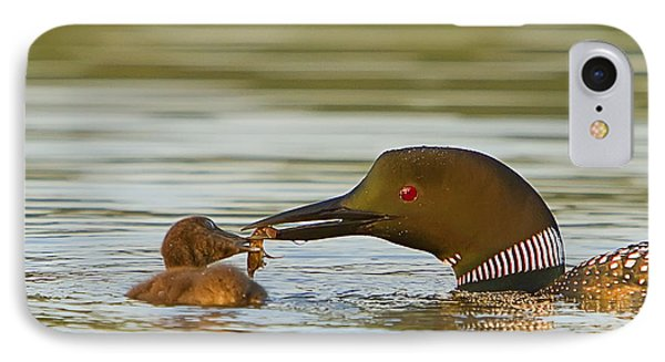 Loon Feeding Chick Phone Case by John Vose