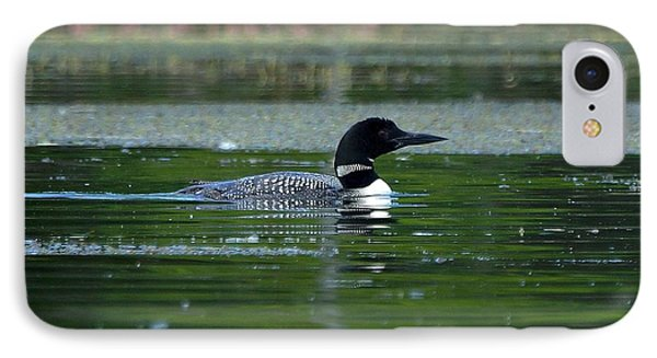 IPhone Case featuring the photograph Loon On Indian Lake by Steven Clipperton
