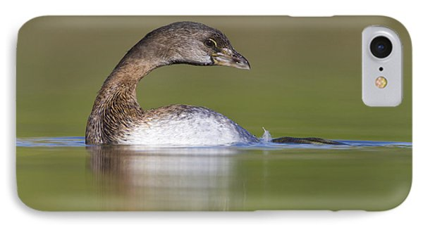 IPhone Case featuring the photograph Loss-neck Grebe by Bryan Keil