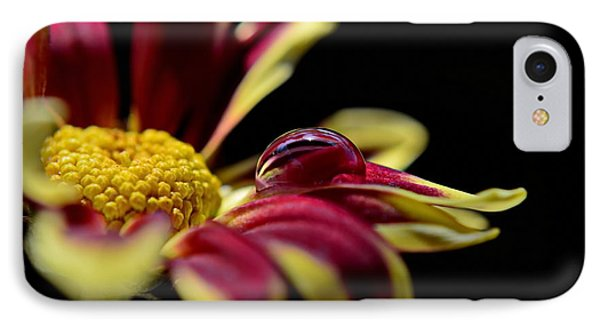 IPhone Case featuring the photograph Lost On A Petal by Michelle Meenawong