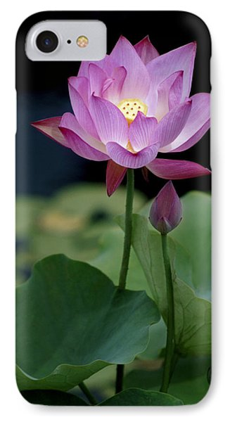 Lotus Blossom IPhone Case by Penny Lisowski