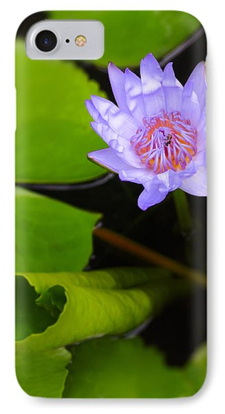 Lotus Flower And Lily Pad IPhone Case by Adam Romanowicz